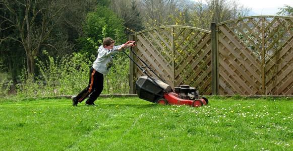 Grundlage Für Einen Schönen Rasen Richtige Erde