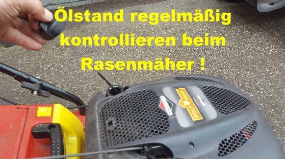 Söllner Motorgeräte GmbH Regensburg, Aldi, Lidl, Bauhaus, Haubensack, Dehner, Papier Liebl, Hornbach, Obi, Globus, Netto, Metro, Baumarkt, Hölzl Motorgeräte, Baywa, Beutelhauser, HKL Baumaschinen,